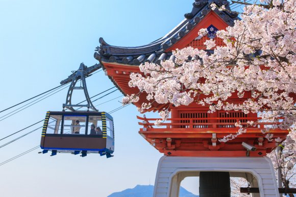 広島県【夜桜】ライトアップされている穴場場所