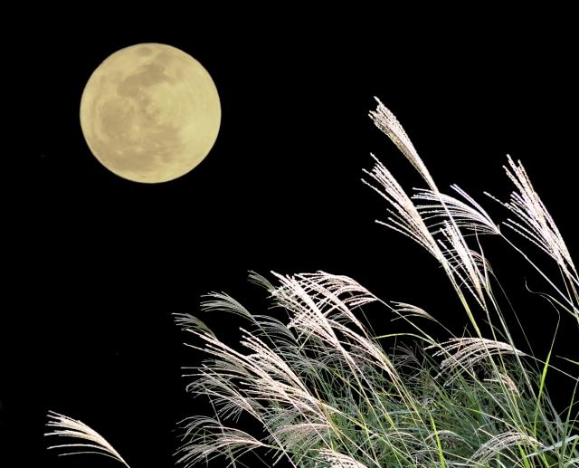 お月見のお供え物
