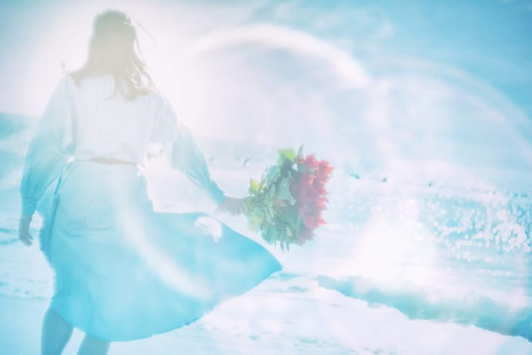 プロポーズのバラ